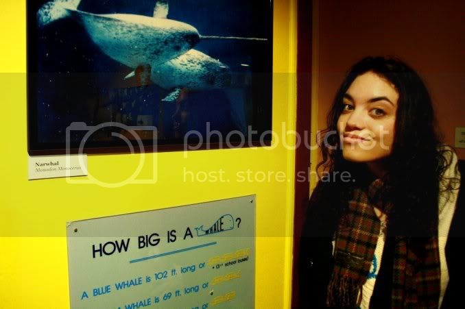 dear reddit, this is a picture of me with a picture of a narwhal. i thought of you. enjoy. :)